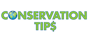 Conservation Tips for Everyone