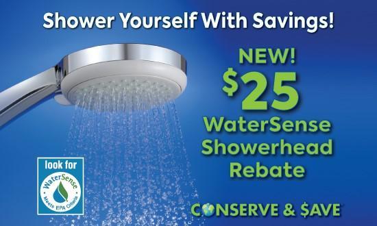 WaterSense Showerhead